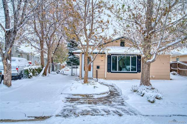 214 N 10 Avenue, Brighton, CO 80601 (#5306899) :: The Peak Properties Group