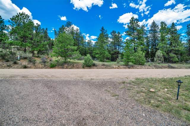 205 Blueberry Trail, Bailey, CO 80421 (#5316240) :: Mile High Luxury Real Estate