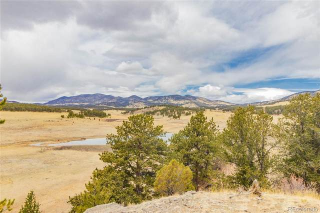 601 Old Kathleen Trail, Guffey, CO 80820 (#5318799) :: The Dixon Group