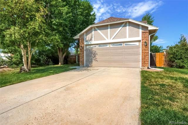 271 N Holcomb Circle, Castle Rock, CO 80104 (#5323586) :: Own-Sweethome Team
