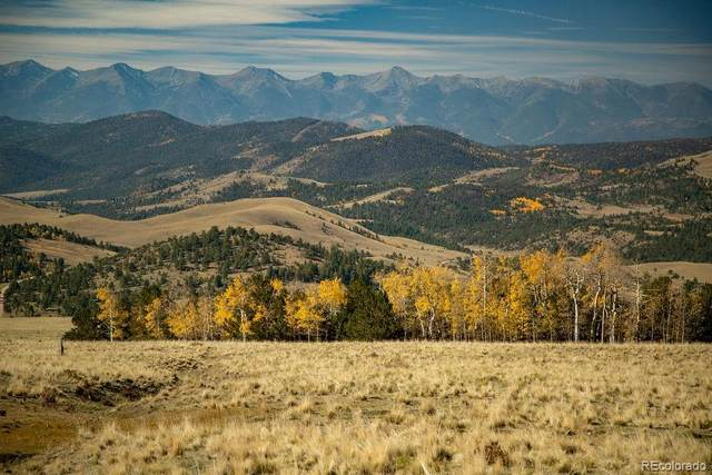 000 Waugh Mountain Road (Cr169), Cotopaxi, CO 81223 (MLS #5327286) :: 8z Real Estate