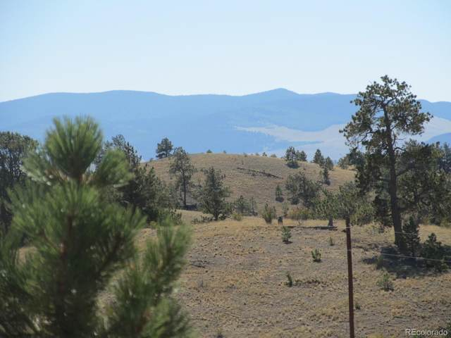Running Bear, Hartsel, CO 80449 (#5327605) :: Kimberly Austin Properties