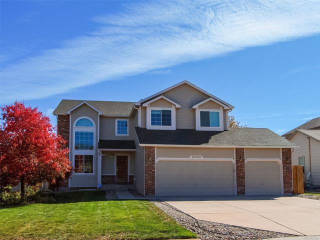 16955 Pawnee Valley Trail, Monument, CO 80132 (#5329129) :: Bicker Realty
