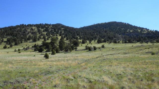 512 Elkhorn Trail, Guffey, CO 80820 (MLS #5329398) :: 8z Real Estate