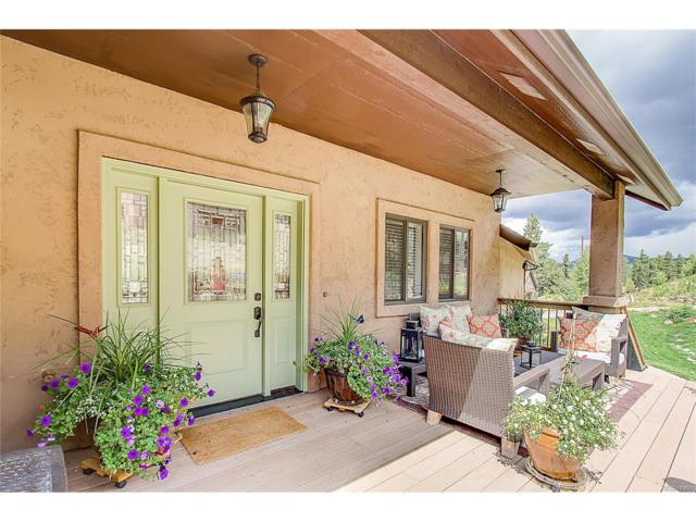 205 Iron Eagle Point, Woodland Park, CO 80863 (MLS #5330027) :: 8z Real Estate