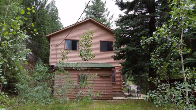 808 Soda Creek Road, Idaho Springs, CO 80452 (#5331072) :: The City and Mountains Group