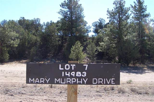 14983 Mary Murphy Drive, Nathrop, CO 81236 (#5332606) :: The Gilbert Group