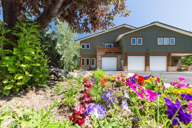 1820 Hunters Drive, Steamboat Springs, CO 80487 (#5332921) :: The Heyl Group at Keller Williams