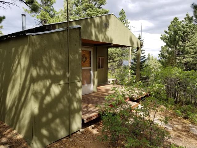 460 County Road 182M, Westcliffe, CO 81252 (#5333153) :: Bring Home Denver