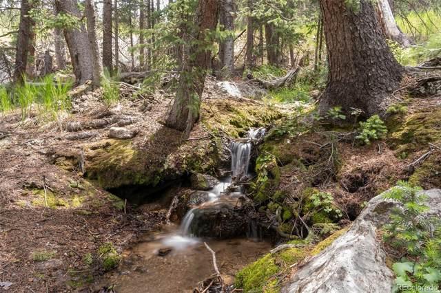 11988 Colorado 103, Idaho Springs, CO 80452 (#5335997) :: Own-Sweethome Team