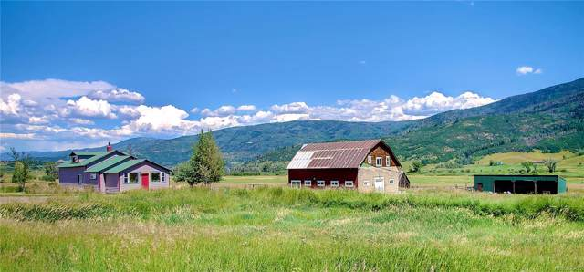 27700 County Road 18, Steamboat Springs, CO 80487 (#5336246) :: The Heyl Group at Keller Williams