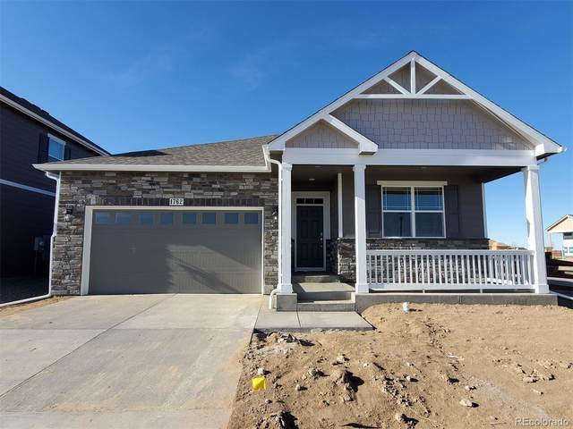 1762 Summer Bloom Drive, Windsor, CO 80550 (MLS #5337088) :: Bliss Realty Group