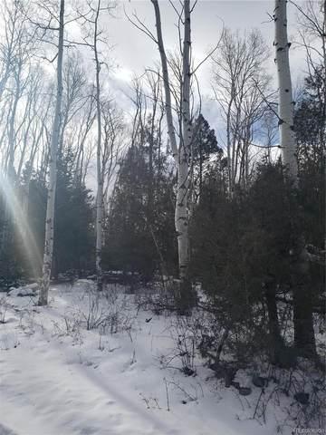 255 Mill Run, Hooper, CO 81136 (MLS #5338263) :: 8z Real Estate