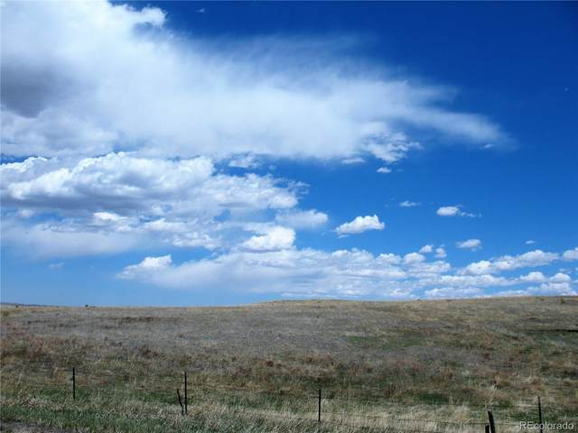 15445 Mcclelland Road, Calhan, CO 80808 (#5344261) :: Hudson Stonegate Team