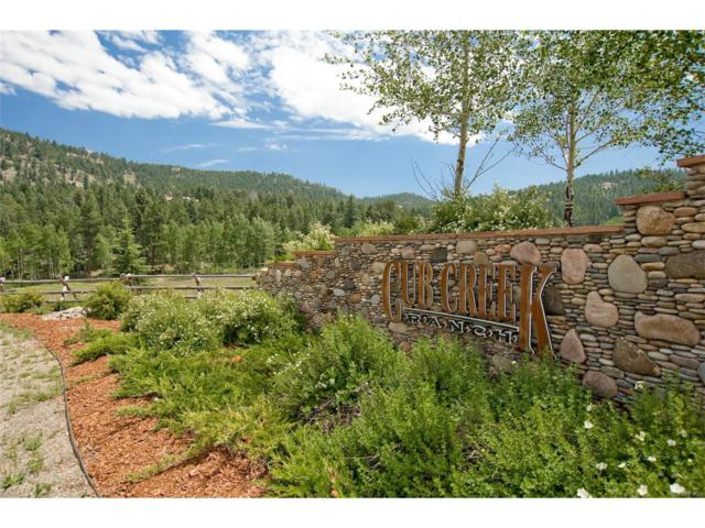 6303 Little Cub Creek Road, Evergreen, CO 80439 (MLS #5348852) :: 8z Real Estate