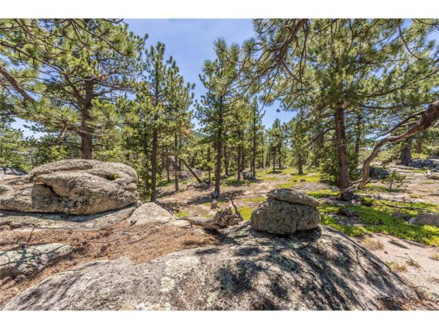 Ridge Road, Jamestown, CO 80481 (MLS #5349495) :: 8z Real Estate