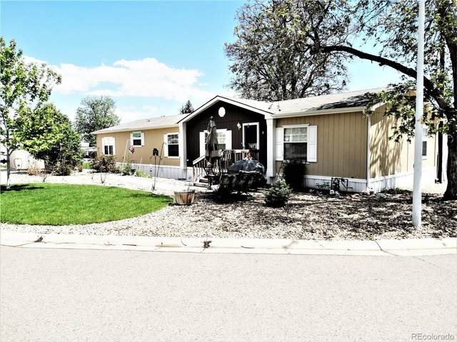 1801 W 92nd Avenue, Federal Heights, CO 80260 (MLS #5350012) :: 8z Real Estate