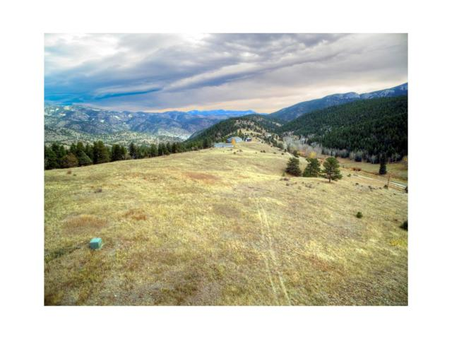 Lot 4 Old Glory Road, Idaho Springs, CO 80452 (#5350476) :: Structure CO Group