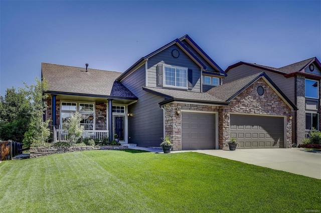 22349 Eagle Run Lane, Parker, CO 80138 (#5352288) :: The DeGrood Team