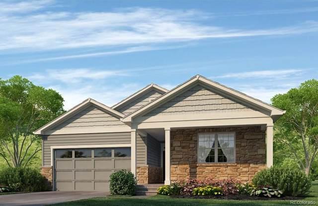 7460 E 157th Place, Thornton, CO 80602 (#5355430) :: HomePopper