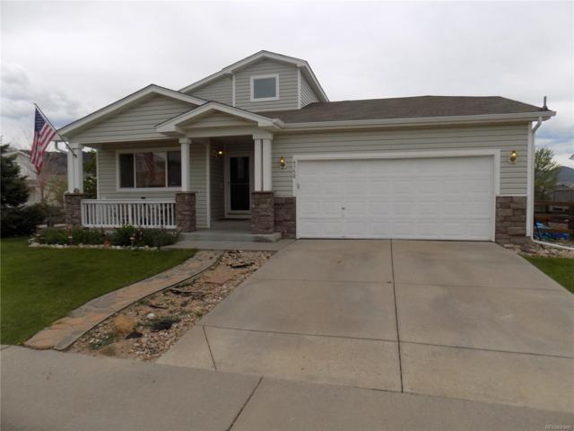 9750 Falcon Lane, Littleton, CO 80125 (#5359554) :: The Pete Cook Home Group