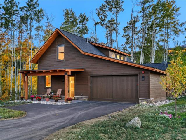 22 W Baron Way, Silverthorne, CO 80498 (#5361759) :: The Heyl Group at Keller Williams