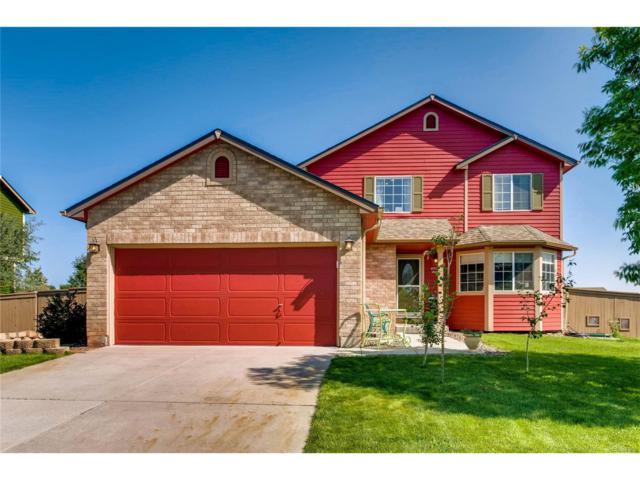 4995 Shelby Drive, Castle Rock, CO 80104 (MLS #5366145) :: 8z Real Estate