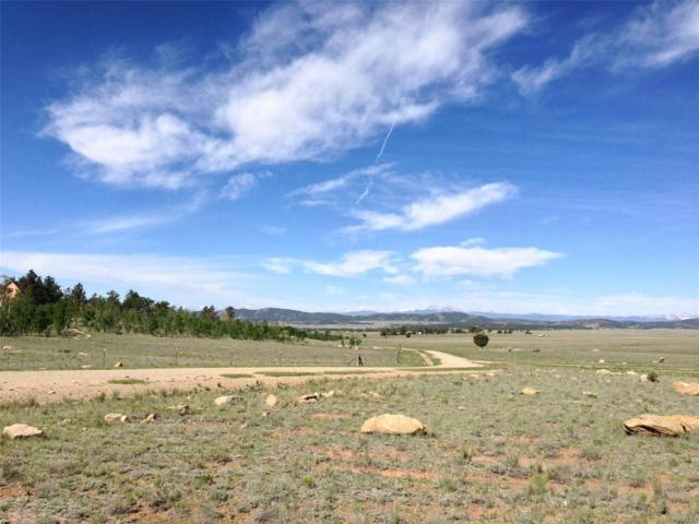 3767 Ute Trace, Hartsel, CO 80449 (#5367059) :: Structure CO Group
