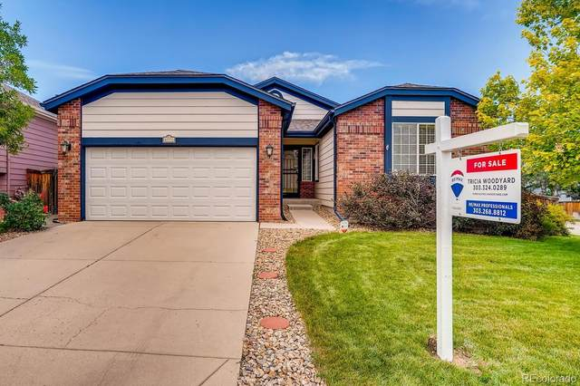 6771 Tiger Tooth, Littleton, CO 80124 (#5367100) :: The DeGrood Team
