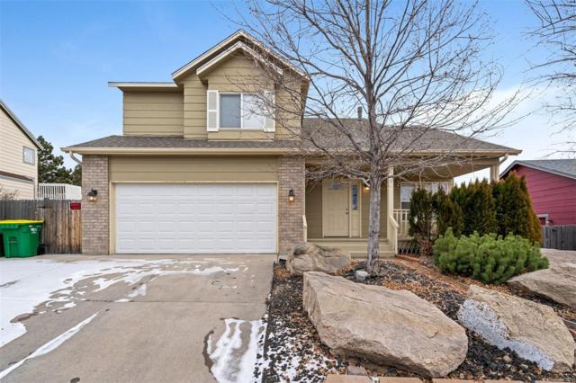 2266 Beacham Drive, Castle Rock, CO 80104 (#5374044) :: Sellstate Realty Pros