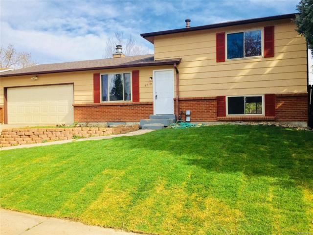 8719 W Euclid Place, Littleton, CO 80123 (#5378703) :: The City and Mountains Group