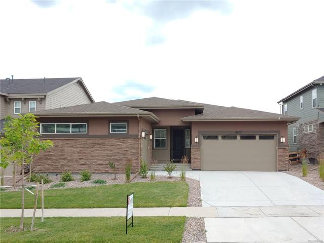 8823 Flattop Street, Arvada, CO 80007 (MLS #5381416) :: Bliss Realty Group