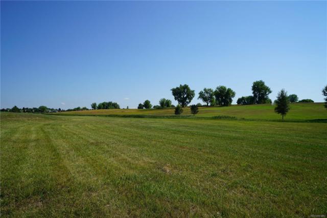 3449 Elderberry Lane, Mead, CO 80542 (MLS #5382792) :: 8z Real Estate