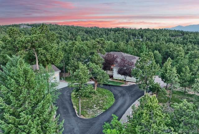 1175 Dolan Drive, Monument, CO 80132 (MLS #5384287) :: 8z Real Estate