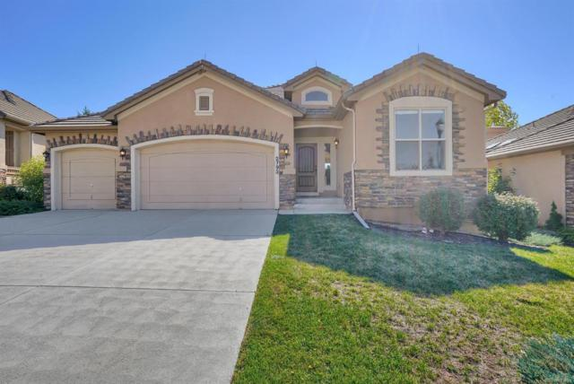 2793 Crooked Vine Court, Colorado Springs, CO 80921 (MLS #5384887) :: Bliss Realty Group