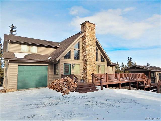 145 Briscoe Court, Fairplay, CO 80440 (MLS #5388794) :: 8z Real Estate