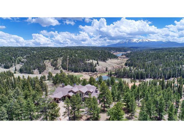 4145 Omer Road, Divide, CO 80814 (#5389175) :: Wisdom Real Estate