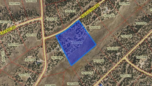 7088 Waligunda, Fort Garland, CO 81133 (#5390909) :: RE/MAX Professionals