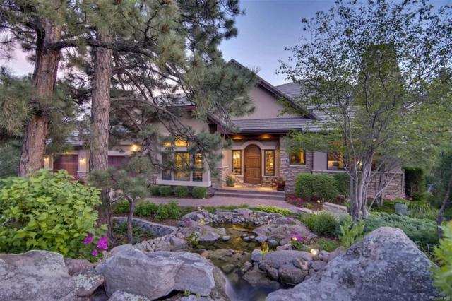 641 Ruby Trust Way, Castle Rock, CO 80108 (#5391208) :: The Healey Group