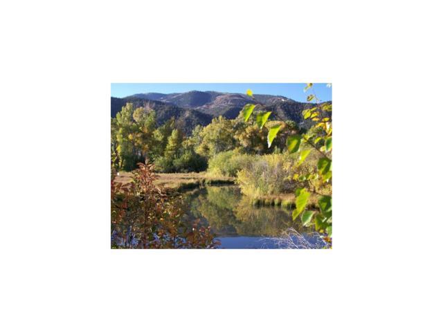 1107 E Ouray, Poncha Springs, CO 81242 (MLS #5391478) :: 8z Real Estate