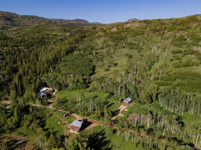 41800 and 41890 County Road 38A, Steamboat Springs, CO 80487 (#5391720) :: Arnie Stein Team | RE/MAX Masters Millennium