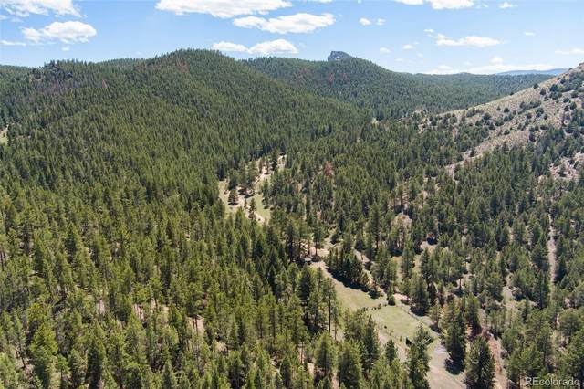 24092 Resort Creek Road, Pine, CO 80470 (#5392229) :: The Colorado Foothills Team | Berkshire Hathaway Elevated Living Real Estate