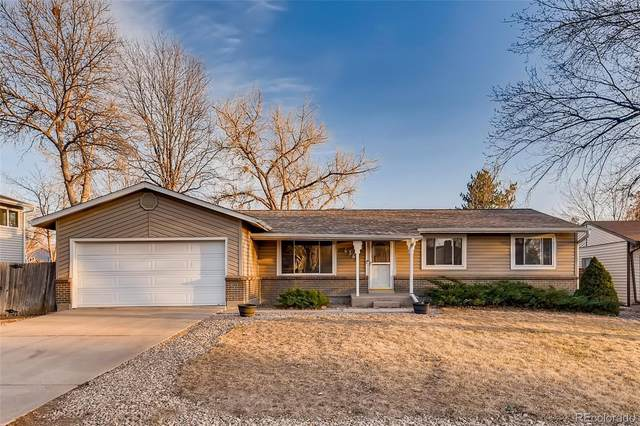 6366 W 86th Avenue, Arvada, CO 80003 (#5393457) :: The Harling Team @ HomeSmart