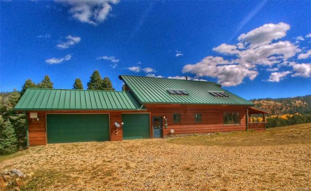 5717 Pass Creek Road, La Veta, CO 81055 (#5395335) :: Hometrackr Denver
