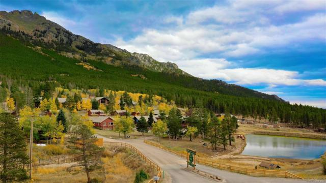 6120 State Highway 7, Estes Park, CO 80517 (MLS #5396885) :: 8z Real Estate