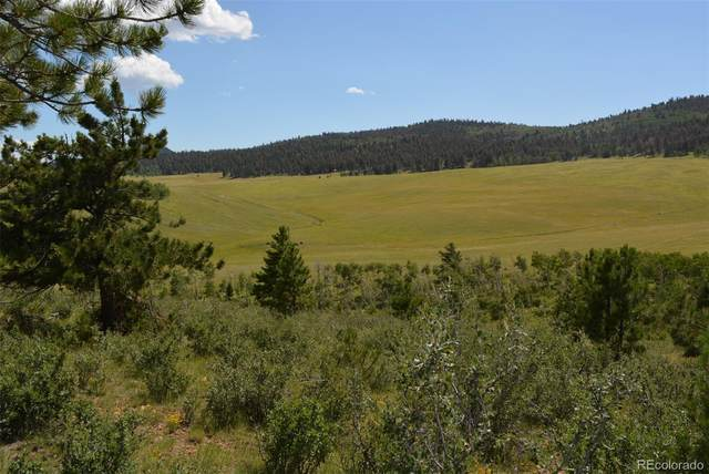 127 Sulky Court, Hartsel, CO 80449 (MLS #5398228) :: 8z Real Estate