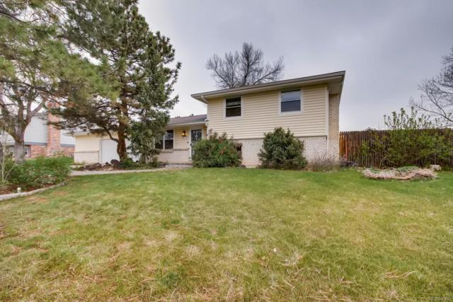 6071 S Ingalls Street, Littleton, CO 80123 (#5399461) :: Colorado Home Finder Realty