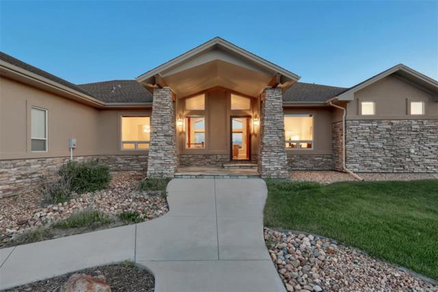202 Castlemaine Court, Castle Rock, CO 80104 (#5400367) :: Mile High Luxury Real Estate