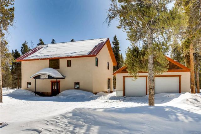 449 Augusta Drive, Leadville, CO 80461 (#5403065) :: The Peak Properties Group