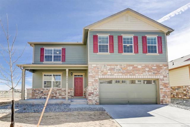 6059 Sun Mesa Circle, Castle Rock, CO 80104 (#5403232) :: Colorado Home Finder Realty